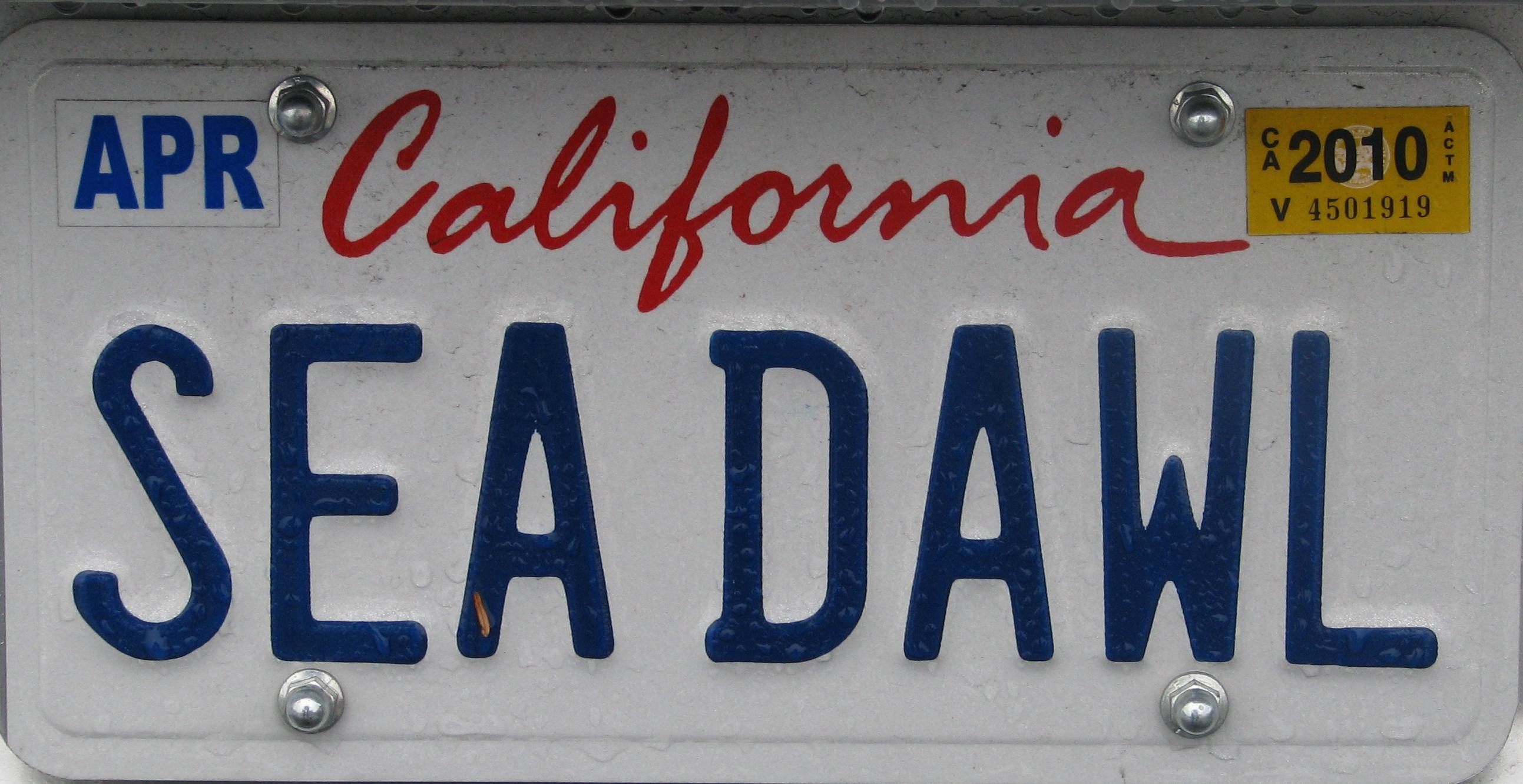 CA.SEADAWL.JPG